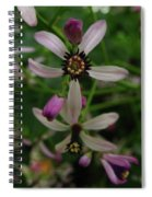 Chock Cherry Flower Spiral Notebook