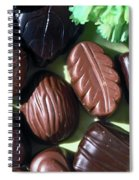 Chocolate Candy Spiral Notebook