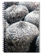 Chocolate Coconut Cakes Spiral Notebook