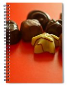 Chocolate Delight Spiral Notebook