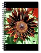 Chocolate Sunflower Spiral Notebook