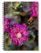 Cholla 3 Spiral Notebook