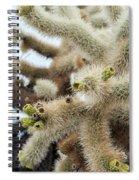 Cholla Cactus Garden Closeup Spiral Notebook