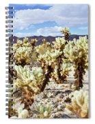Cholla Desert Garden Spiral Notebook