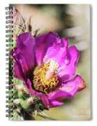 Cholla Flower Spiral Notebook