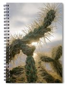 Cholla, Organ Pipe National Monument, Az  January 2015 Spiral Notebook