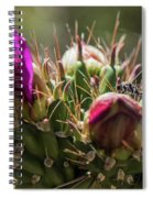 Cholla With Wasp Spiral Notebook