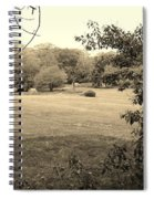 Christ In The Field Sepia Spiral Notebook
