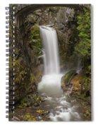 Christine Falls Mt Rainier Washington Spiral Notebook