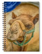 Christmas Camel On Call Spiral Notebook
