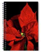Christmas Fire Spiral Notebook