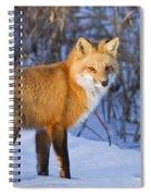 Christmas Fox Spiral Notebook