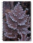 Christmas Frosty Pattern Spiral Notebook
