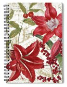 Christmas In Paris I Spiral Notebook