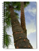 Christmas Lights On Palm Trees Spiral Notebook