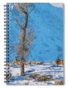 Christmas Morning Magic Spiral Notebook