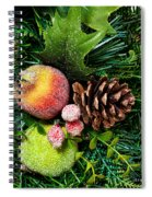 Christmas Ornaments II Spiral Notebook