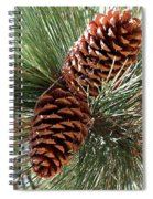 Christmas Pine Cones Spiral Notebook