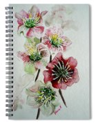 Christmas Rose Spiral Notebook