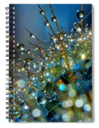 Christmas Tree Made Of Cactus And Water Drops Spiral Notebook