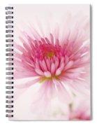 Chrysanthemum #004 Spiral Notebook