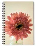 Chrysanthemum #029 Spiral Notebook