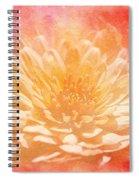 Chrysanthemum Obscured Spiral Notebook