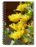 Chrysanthemums Spiral Notebook