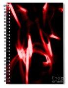 Church Grim Spiral Notebook