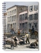 Cincinnati Hog Herding Spiral Notebook