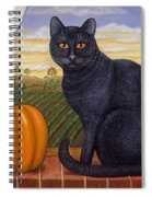 Cinder The Cat Spiral Notebook