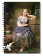 Cinderella And The Birds Spiral Notebook