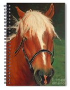 Cinnamon The Horse Spiral Notebook