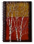 Cinque Betulle Spiral Notebook