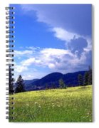 Cinquefoil Blossoms Spiral Notebook