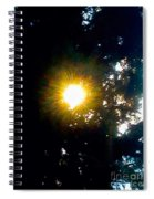 Circle Of Sunglow Through Pine Spiral Notebook