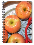 Circles 1 - Apples Spiral Notebook