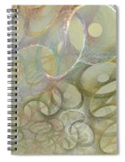 Circles In Circles Spiral Notebook