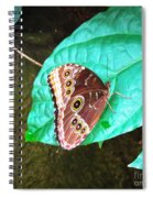 Circles On Wings Spiral Notebook
