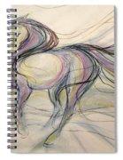Circus Circles Spiral Notebook