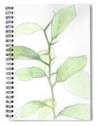 Citrus Sapling Spiral Notebook