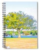 City Park 6 Spiral Notebook