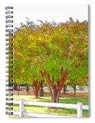 City Park 9 Spiral Notebook