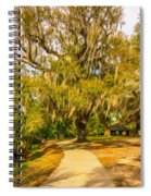 City Park New Orleans - Paint Spiral Notebook