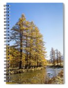 Claree Valley In Autumn - 1 - French Alps Spiral Notebook