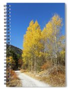 Claree Valley In Autumn - 11 - French Alps Spiral Notebook