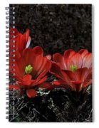 Claret Cups Spiral Notebook