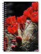 Claret Cups Spiral Notebook