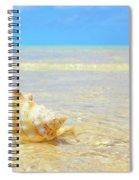 Clarity, Simplicity Spiral Notebook