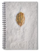 Clash Of Seasons Spiral Notebook